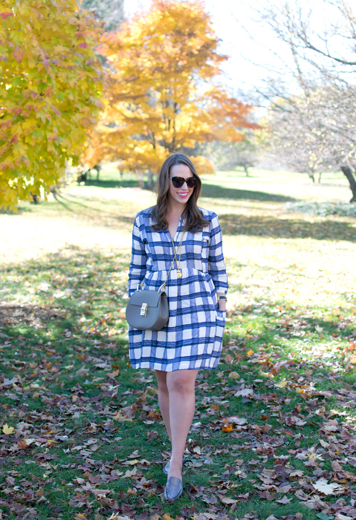 Plaid-Dress-2