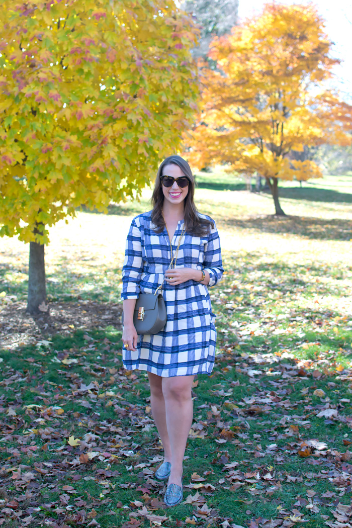Plaid-Dress-9