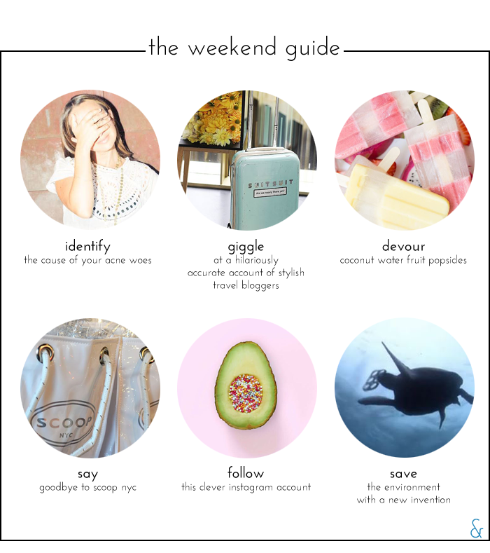 The Weekend Guide 05.20.16