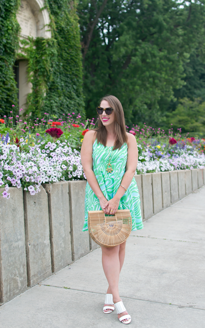 Lilly Pulitzer Maisy Swing Dress, Cult Gaia Ark Bag, Rebecca Minkoff Camila Shoes