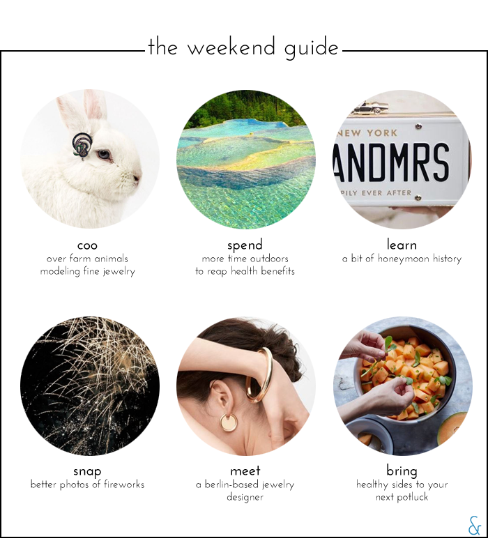 The Weekend Guide 07.01.16